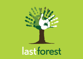 Last Forest