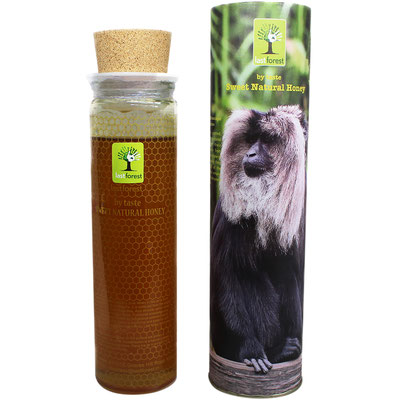 Last Forest Biodiversity Series - Wild Honey (Lion Tailed Macaque)